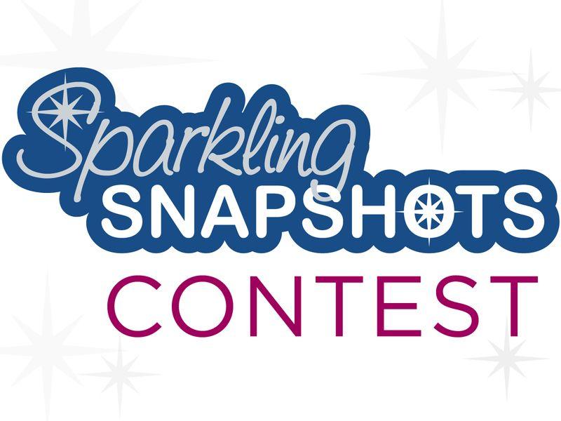 SparklingSnapshots_logo_contest